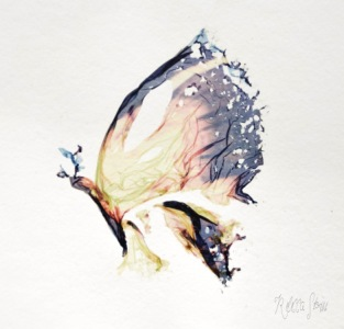 un sogno farfalla-lift-off-polaroid-sx70-rebecca-lena