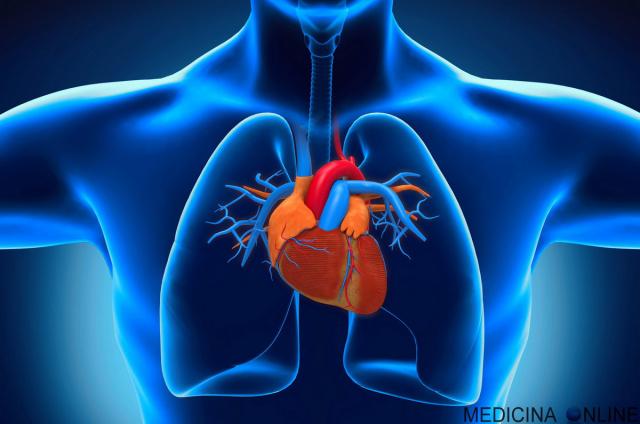 IL colesterolo medicina-online-cuore-elettrocardiogramma-sinusale-defibrillatore-cardioversione-elettrica-con-shock-farmacologica-farmaci-urgenza-emergenza-massaggio-cardiaco-arresto-res