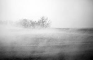 Respiro nella nebbia