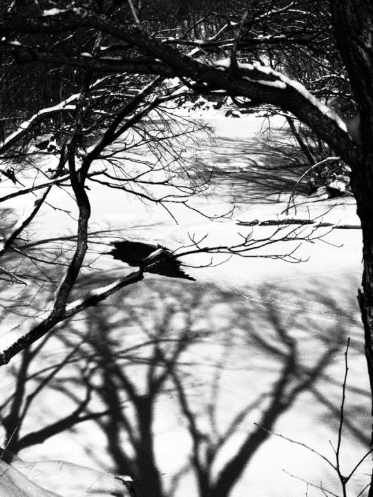 foto by©juri