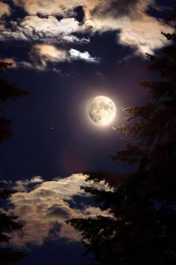 Odio la luna