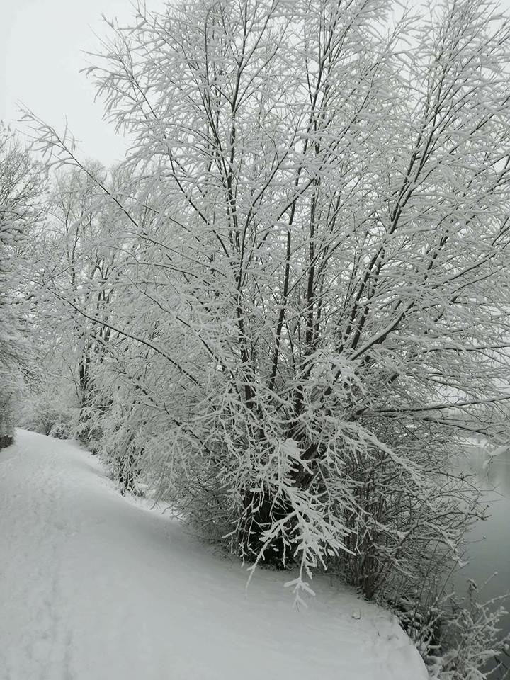 La neve arriva