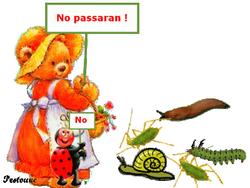 cba11-no2bpassaran.png