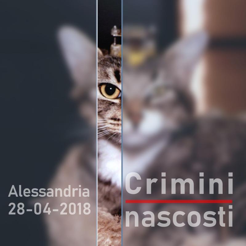 CriminiNascosti_square-800x800