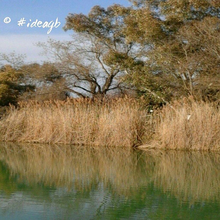© by #ideagb reflex lagoazzurro altidona giuseppe695854636..jpeg