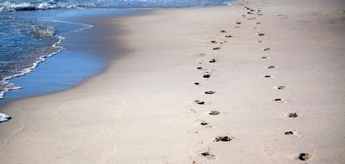 sabbia.jpg