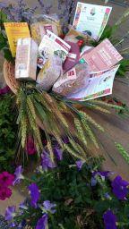 4 Il Salotto ANTEPRIMA cesti equazione con fiori