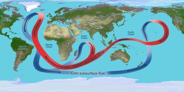 Circulations courants marins - Océan Atlantique