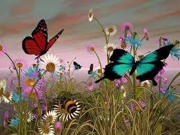 farfalle libere.jpg