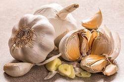 garlic-3419544__340.jpg