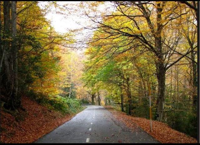 Verso l'autunno