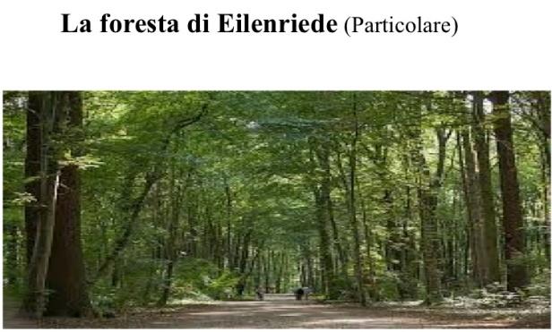 1aaaa La Foresta Hannover (trascinato) 3