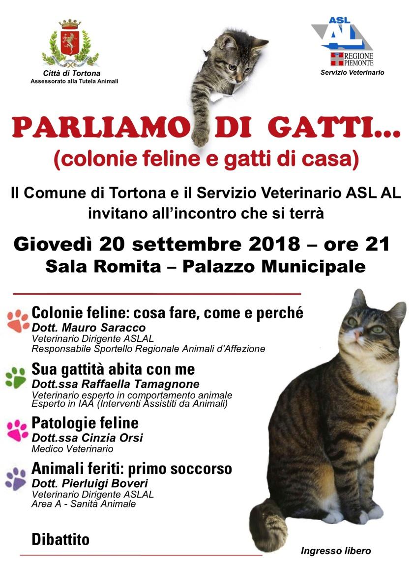 PARLIAMO DI GATTI_locandina_convegno