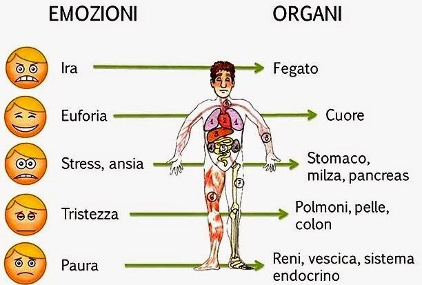 psicosomatica_emozioni-organi