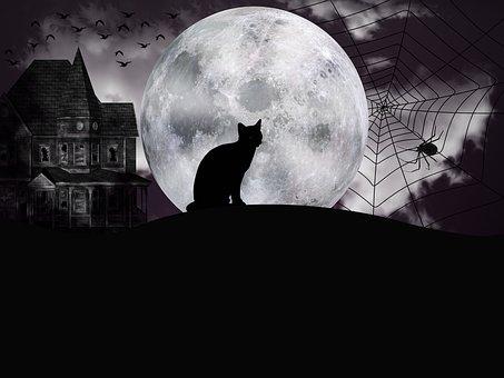 halloween-3696571__340