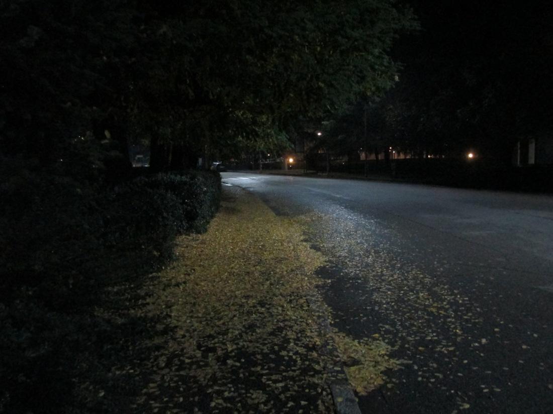 Quattro passi nella notte in via Don Giovine IMG_2869
