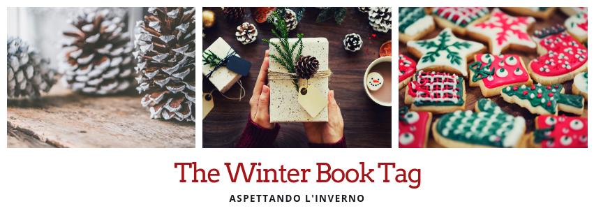 Aspettando l'inverno: The Winter BookTag