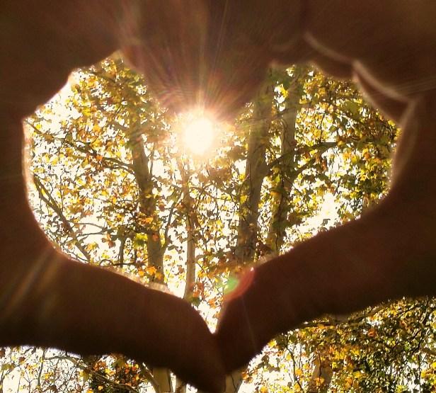 cuore 2 novembre