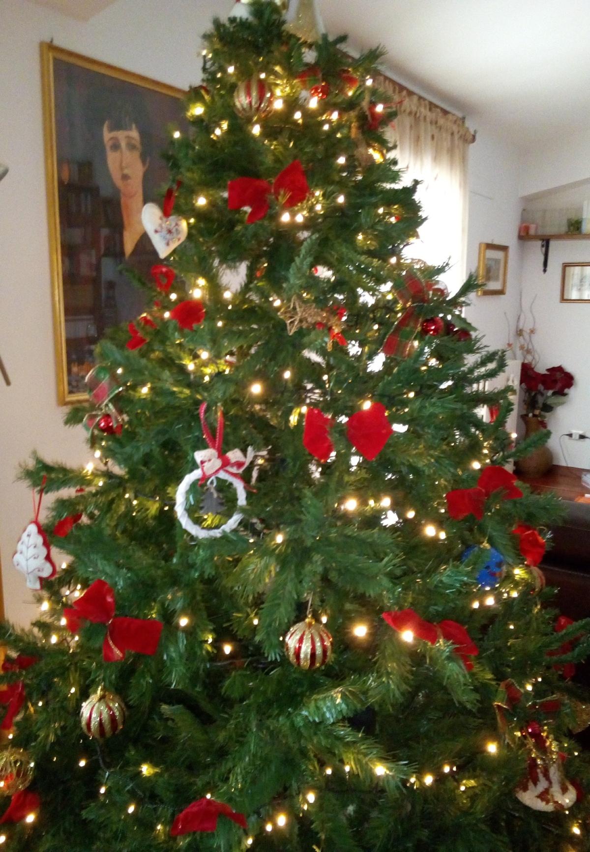 Ultimo albero a casamia