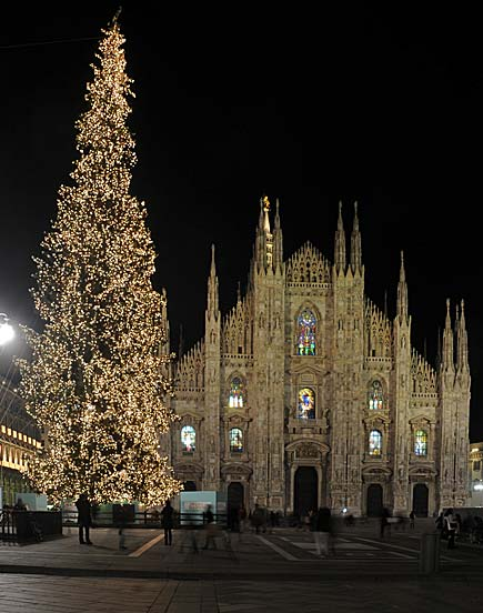 La tradizione dell'albero di Natale. The tradition of Christmastree.