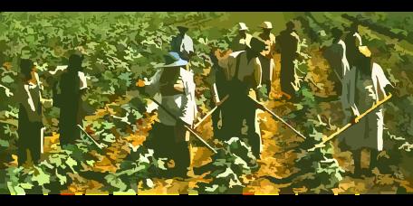 farming-42133_960_720