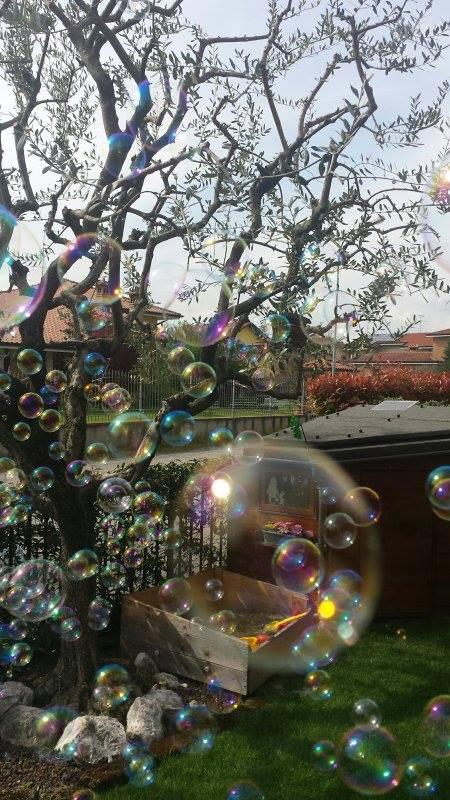 Il sogno è una bolla