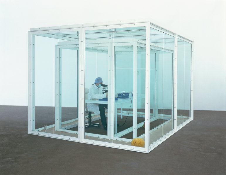 damien hirst a way of seeing