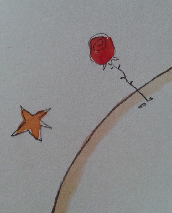 il fiore e la stella
