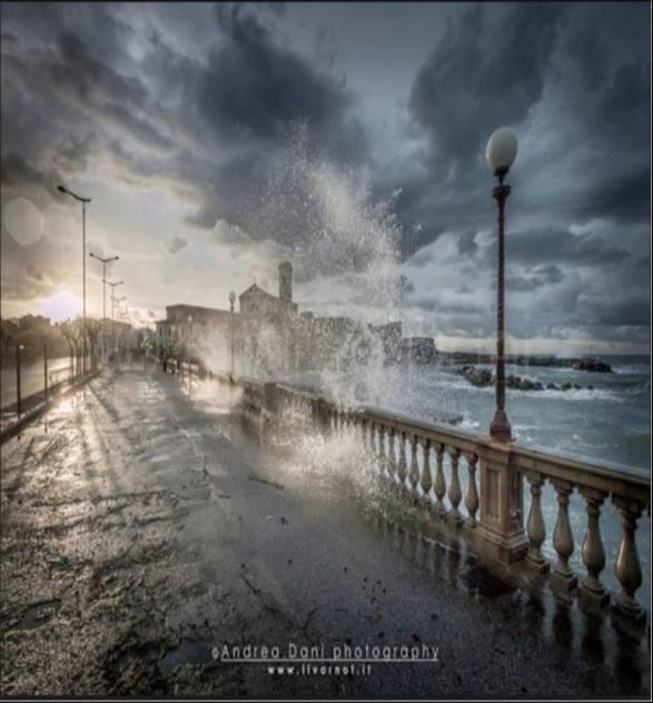 Livorno 51851965_703718193357965_761561868392202240_n