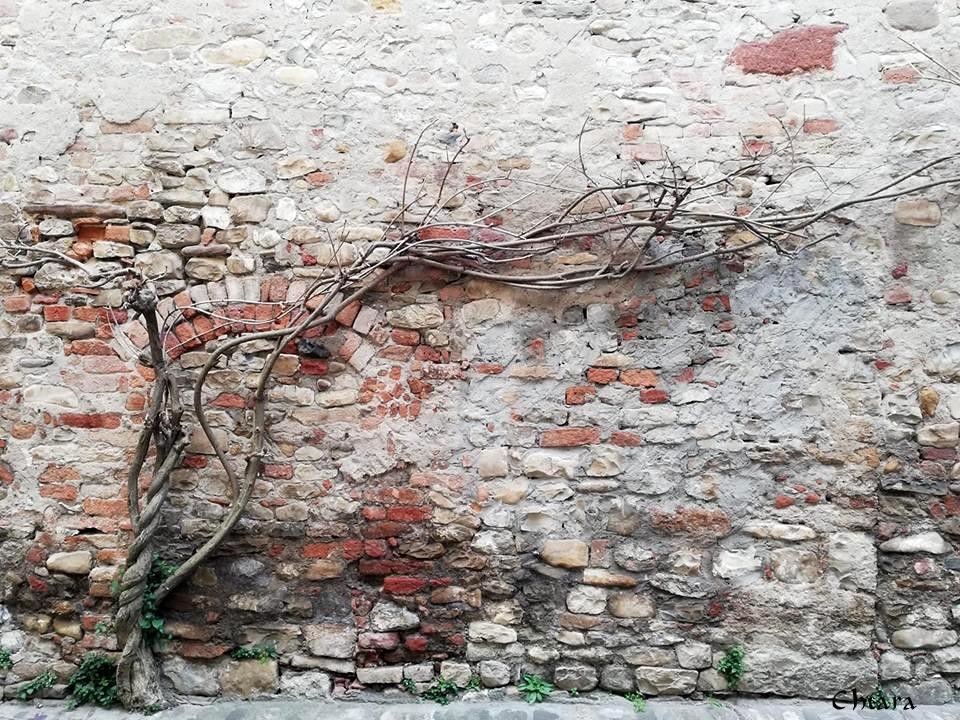 castell_arquato-francesco_chiara