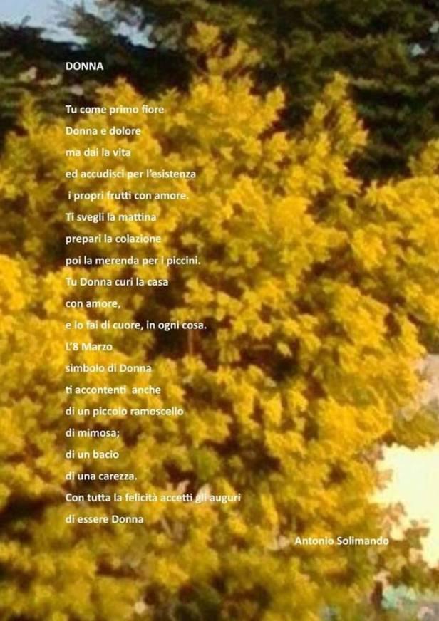 Momenti di poesia. Donna, di Antonio Solimand