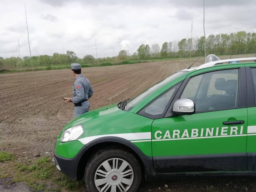 car FOTO1
