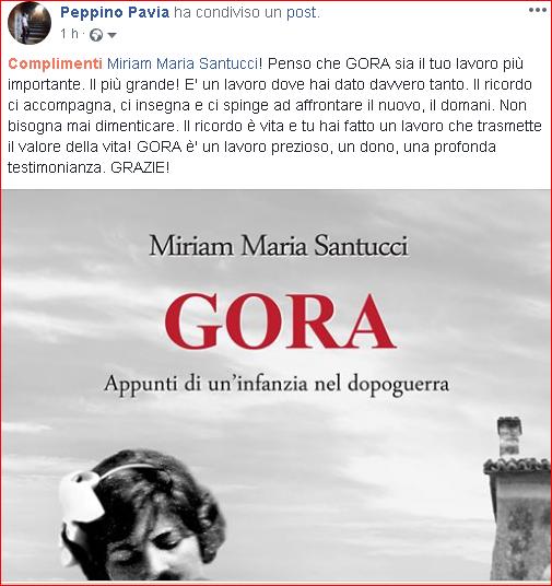 Commento di Peppino Pavia