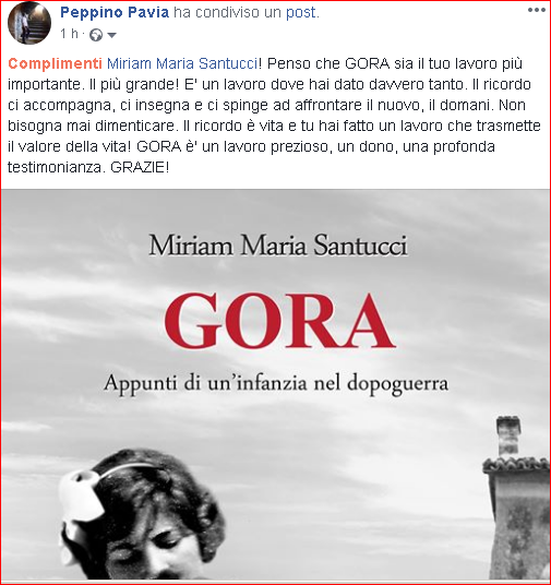 Commento di Peppino Pavia