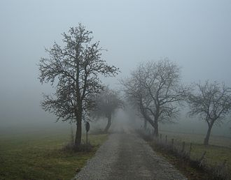 330px-Nebel_in_der_Region_Rhön_01386.jpg