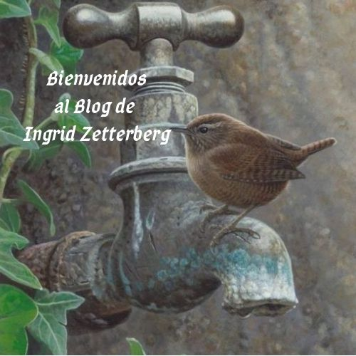 Bienvenidos al Blog de Ingrid Zetterberg (1)