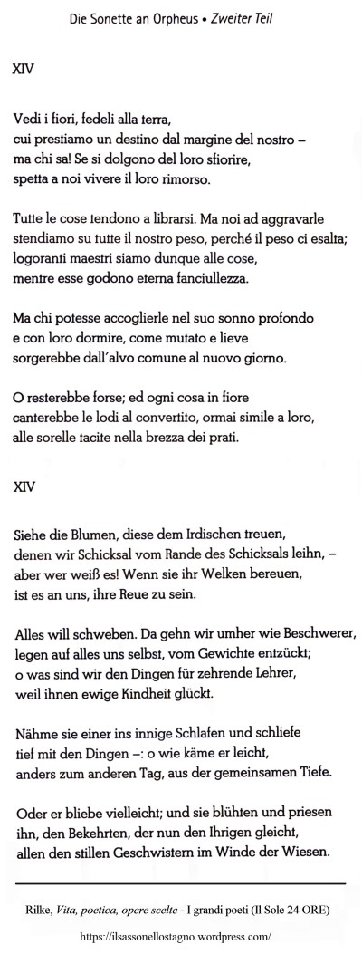 Rilke - Il sasso nello stagno di AnGre