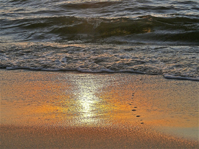 https://alessandriatoday.files.wordpress.com/2019/08/beach-908279_1920.jpg