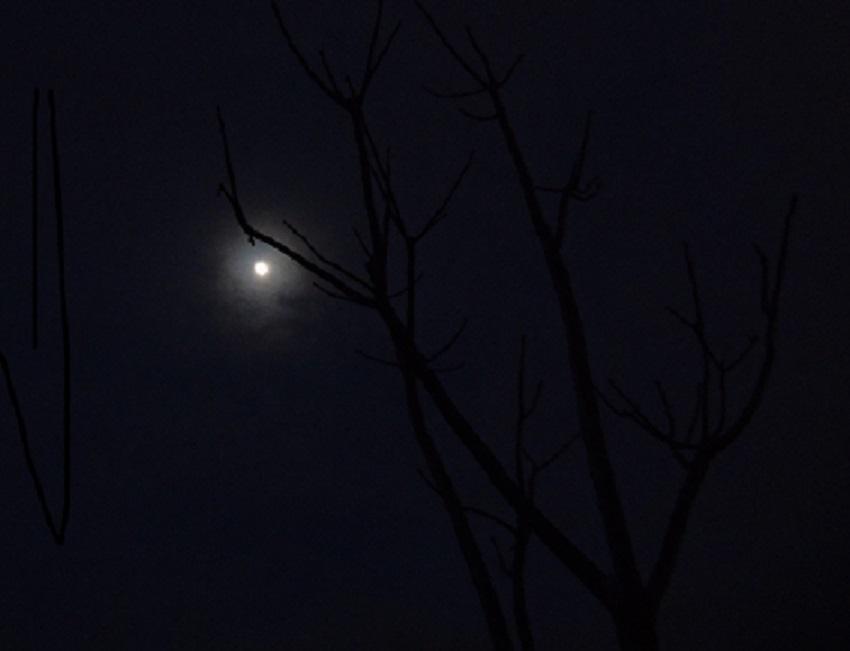 Luna in camp