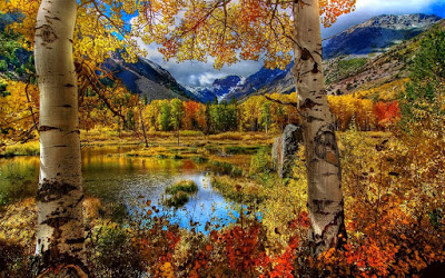 185197__nature-landscape-autumn-trees-leaves-mountain-lake-sky-clouds-grass_p