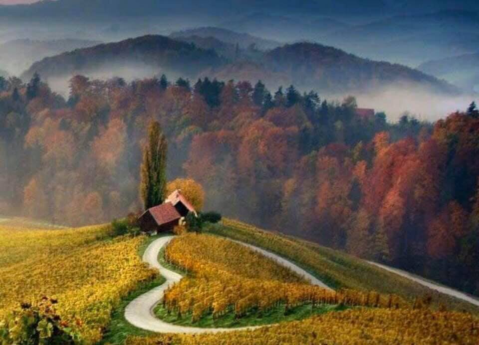 Autunno 575635359_8891799973193056256_n