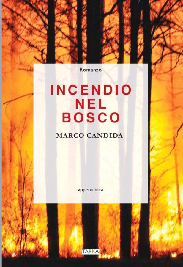 Incendio nel bosco, di Marco Candida