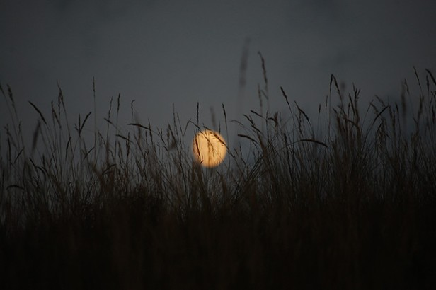 luna e vento