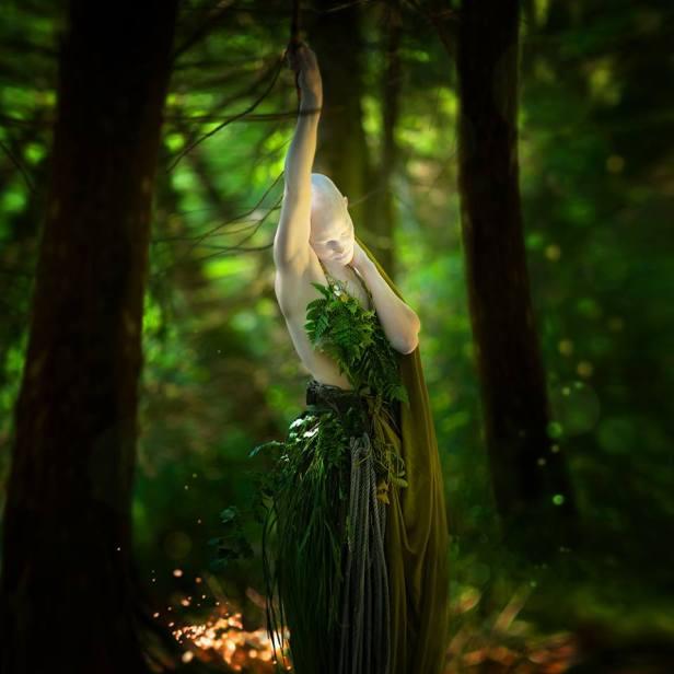 sogno in verde