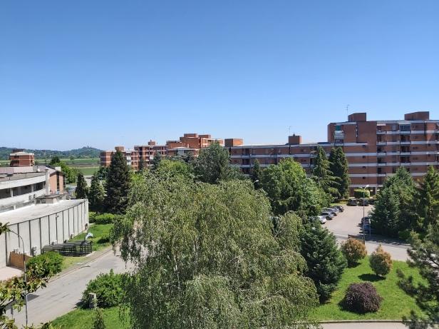 Borsalino 2