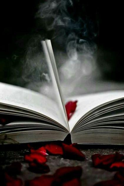 libro 654