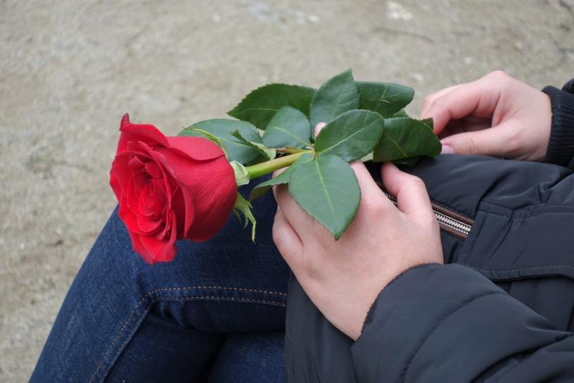 https://alessandriatoday.files.wordpress.com/2020/06/girl-with-red-rose-4840216_1920.jpg