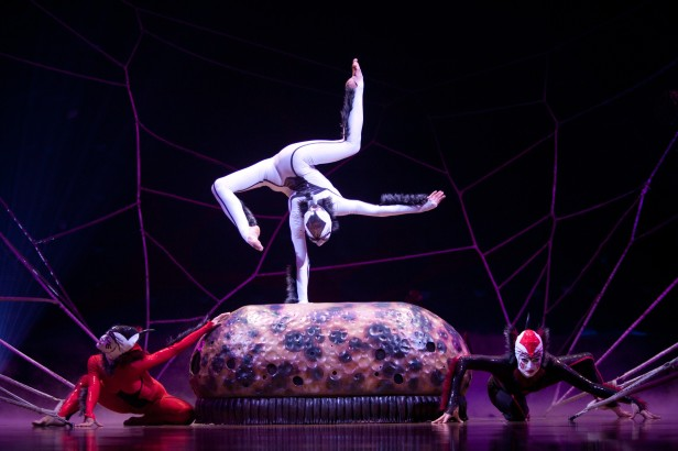 Cirque-du-Soleil-Ovo-ph-no-credito