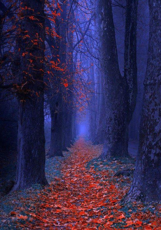 autunno blu